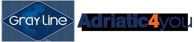 a4y-logo_380x84-1